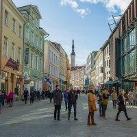 Пешком по Таллину :: leo yagonen