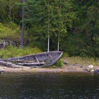У озера :: Владимир Кириченко  wlad113