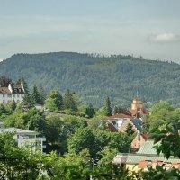 Зеленый город :: Николай Танаев