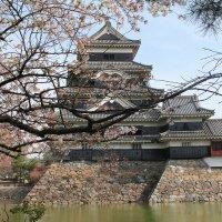 Япония. Замок Мацумото. :: Виктория
