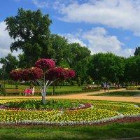 Весенний парк :: Тамара Бедай