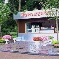 Купите мороженое ) :: Людмила