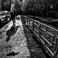 После дождика со стульчиком. :: Надежда Ивашкина