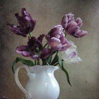 Фиолетовые тюльпаны :: Наталия Тихомирова