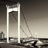 Парковый мост. Йошкар-Ола. Ч/Б :: Андрей Гриничев