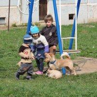 Ребята с нашего двора... :: Вячеслав Маслов