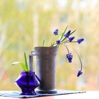 Весна  -  насквозь! (2 вариант) :: Наталья Казанцева