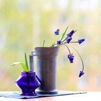 Весна  -  насквозь! (вариант 1) :: Наталья Казанцева