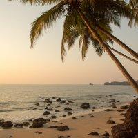 пляж :: Ольга Горд