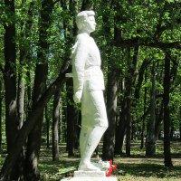 Цветы народной героине :: Дмитрий Никитин