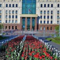 Клумба у Городского Суда... :: Sergey Gordoff