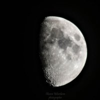 Луна :: Оксана Ушанкова
