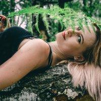 на дереве :: Ольга (Кошкотень) Медведева