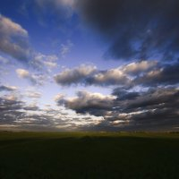 В дождливых полях :: Сергей Жуков
