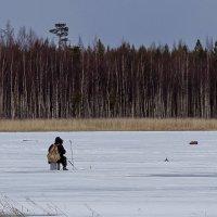 Майский полигон для зимней рыбалки :: Дмитрий Сиялов