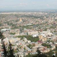 Тбилиси с высот птичьего полёта! :: Светлана Масленникова