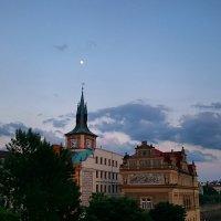 Луна :: Ольга Богачёва