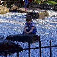 Игра в камушки :: dindin