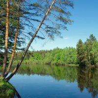С майской синевой прощается река...... :: Лесо-Вед (Баранов)