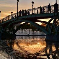 Золотой закат :: Ирина Ярцева