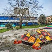 Океанариум и черепаха :: Юлия Батурина