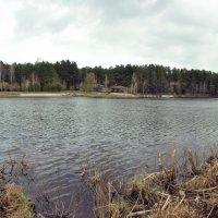 Голубое озеро. Бердск. :: Дмитрий Климович