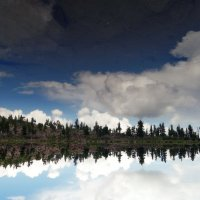 Reflections :: Sayan Wolf