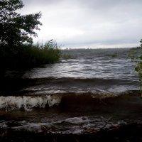 Перед дождём :: Александр Алексеев