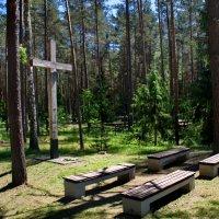 Моление в лесу. :: Aleksandr Ivanov67 Иванов