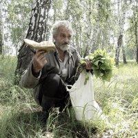 Увидел ещё гриб :: Светлана Рябова-Шатунова