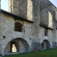 По древним руинам монастыря Святой Бригитты (Таллин) :: veera (veerra)