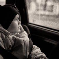 Дождливое настроение :: Дмитрий Гортинский