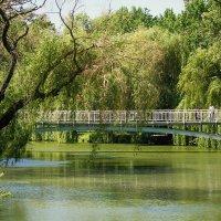 Парк, мост, пейзаж. :: barsuk lesnoi