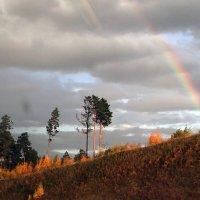 Осенняя радуга. :: Елена Тренкеншу
