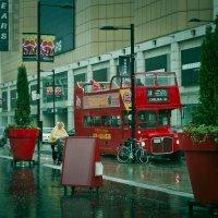 Дождь :: Yulia Braginets