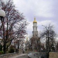 Люблю свой город, дышу ним, раны ним лечу... :: Ирина Сивовол