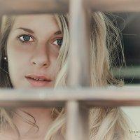 Ангелина :: Вероника Галтыхина