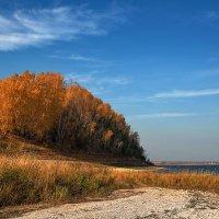 Золотой гребень :: Владимир Макаров