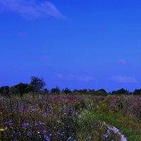 Какое небо голубое!!! :: Олег Семенцов