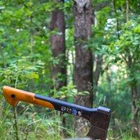 в лесу :: alezi r