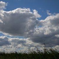 облака :: alezi r
