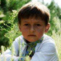 Братец :: Богдан Антоненко