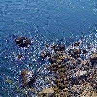 Чёрное море.Болгария. :: Алиса Павлова