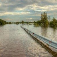 Наводнение в Амурской области :: Игорь Князев