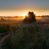 Утро в деревне Высокое. :: Andrei Dolzhenko