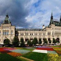 Цветочная поляна на Красной площади :: Надежда Лаптева