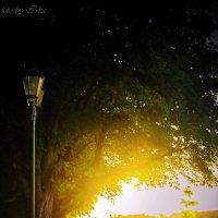 Ужгородская набережная ,закат :: Ира Кондрашкова