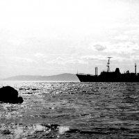 Амурский залив с полуострова Эгершельд, Владивосток 2 :: Евгений Поварёнков
