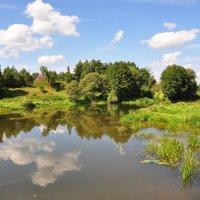 Лето 2013.Река Лопасня. :: Виталий Виницкий