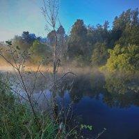 утро на реке :: юрий макаров